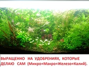 микро,  макро,  калий,  железо - удобрения. Удо для аквариумных растений.
