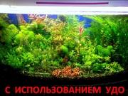 микро,  макро,  калий,  железо -- удобрения для аквариумных растений-