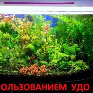 микро,  макро,  калий,  железо -- удобрения для аквариумных растений--