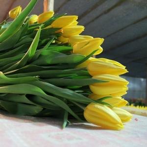 Букеты тюльпанов к 8 марта оптом и в розницу
