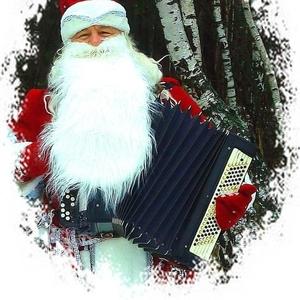 Дед Мороз ведущий баян дискотека на свадьбу юбилей корпоратив минск и