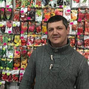 Польские пакетированные семена овощей и цветов оптом.5 соток