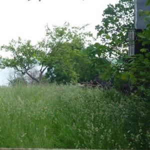 Участок 12 соток в Браславском районе,  д. Дукели