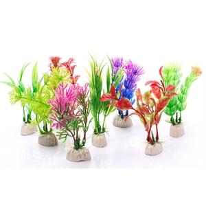 Растения Ассорти